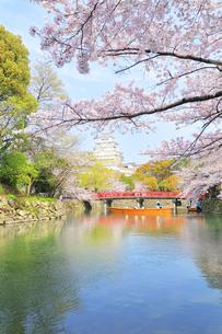 姫路城天守と桜に観光学習船の写真素材 [FYI04311790]