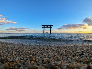 白髭神社と夕焼け2の写真素材 [FYI04311890]