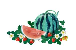 スイカと苺水彩画のイラスト素材 [FYI04312077]