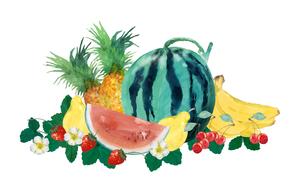 果物水彩画のイラスト素材 [FYI04312078]