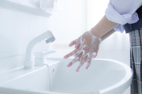 手洗いをする女子学生の手元の写真素材 [FYI04312097]