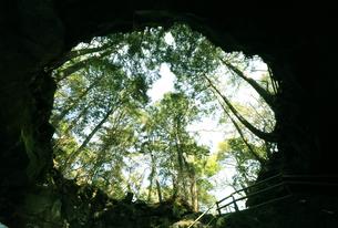 富嶽風穴の写真素材 [FYI04312230]