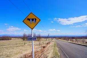 牛の標識の写真素材 [FYI04312428]