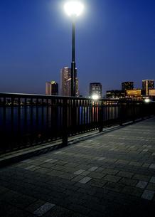 夕暮れの豊洲ぐるり公園の石畳の歩道と高層ビル群の灯りの写真素材 [FYI04313131]