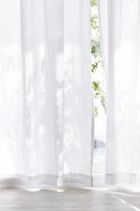白い床と白いカーテンの写真素材 [FYI04313167]