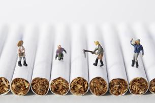 たばことたばこを作るミニチュアの人たちの写真素材 [FYI04313282]