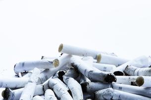 たくさんの煙草の吸い殻の写真素材 [FYI04313316]