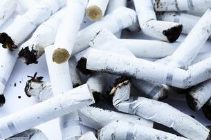 たくさんの煙草の吸い殻の写真素材 [FYI04313317]