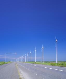 北海道 自然 風景   (青空と風車)の写真素材 [FYI04313474]