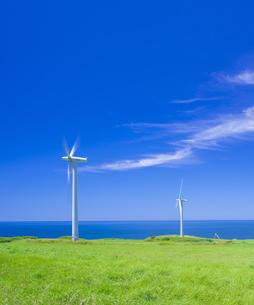北海道 自然 風景   (青空と風車)の写真素材 [FYI04313477]