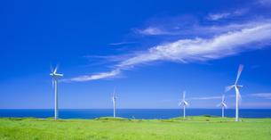 北海道 自然 風景   (青空と風車)の写真素材 [FYI04313478]