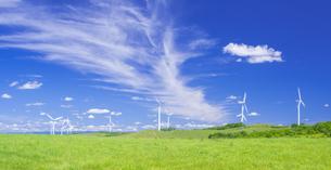北海道 自然 風景   (青空と風車)の写真素材 [FYI04313482]