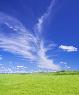 北海道 自然 風景   (青空と風車)の写真素材 [FYI04313483]