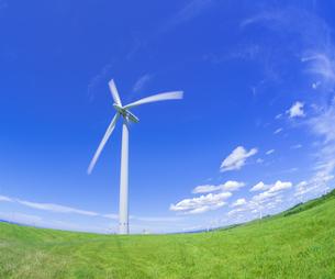 北海道 自然 風景   (青空と風車)の写真素材 [FYI04313487]