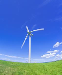 北海道 自然 風景   (青空と風車)の写真素材 [FYI04313490]