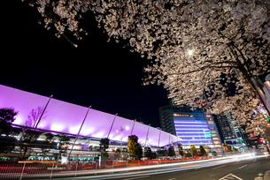 満開の桜と東京駅八重洲口夜景の写真素材 [FYI04313541]