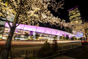 満開の桜と東京駅八重洲口夜景の写真素材 [FYI04313546]