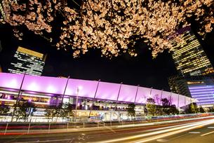 満開の桜と東京駅八重洲口夜景の写真素材 [FYI04313553]