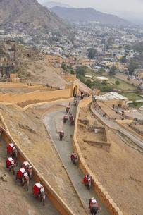 麓から山の上の城まで行くことができる象タクシーの写真素材 [FYI04313924]
