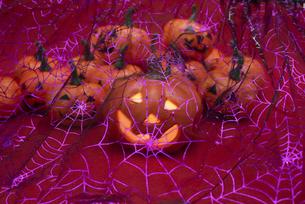 カボチャのフィギュアと蜘蛛の巣の写真素材 [FYI04314104]