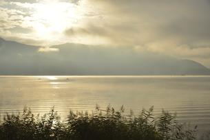 朝日に染まる湖面と葦とボートの写真素材 [FYI04314179]