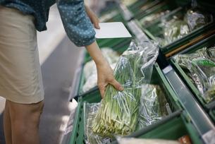 マートで野菜を持っている女性の写真素材 [FYI04314387]