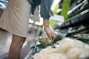 マートで野菜をとっている女性の写真素材 [FYI04314388]