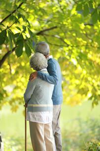 杖を持って散歩している老夫婦の写真素材 [FYI04314435]