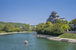 青空と岡山城の写真素材 [FYI04315279]