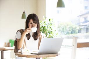 カフェでパソコンを使って仕事をしている女性の写真素材 [FYI04315476]