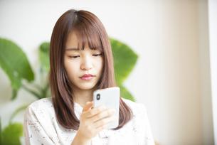 スマホを見ている若い女性の写真素材 [FYI04315665]