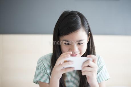 スマホを見ている女の子の写真素材 [FYI04315935]