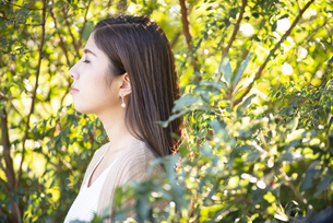 木々の中にいる女性の写真素材 [FYI04315964]