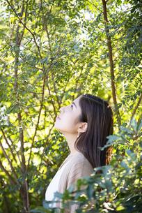 木々の中にいる女性の横顔の写真素材 [FYI04315966]