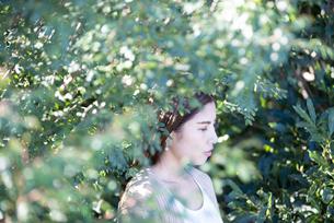 木々の中にいる女性の横顔の写真素材 [FYI04315968]