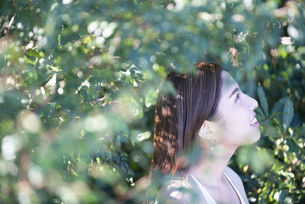 木々の中にいる女性の横顔の写真素材 [FYI04315971]