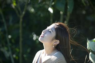 上を見上げている女性の横顔の写真素材 [FYI04315977]