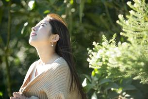 上を見上げている女性の横顔の写真素材 [FYI04315978]