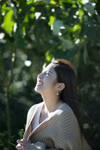上を見上げて笑っている女性の横顔の写真素材 [FYI04315980]