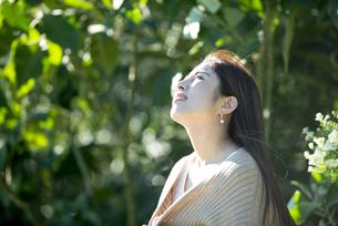 上を見上げている女性の横顔の写真素材 [FYI04315981]