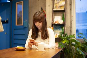 カフェでスマホを見ている女性の写真素材 [FYI04316152]