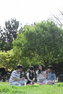 ピクニックをする家族の写真素材 [FYI04317263]