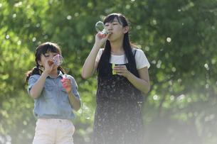 シャボン玉で遊ぶ家族の写真素材 [FYI04317284]