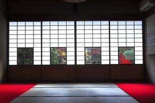 11月 雲竜院 -京都泉涌寺の別院-の写真素材 [FYI04317456]