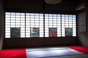 11月 雲竜院 -京都泉涌寺の別院-の写真素材 [FYI04317457]