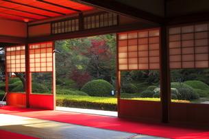 11月 雲竜院 -京都泉涌寺の別院-の写真素材 [FYI04317458]