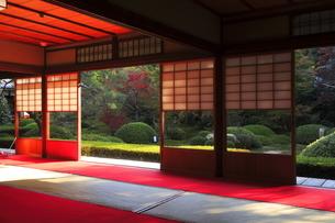 11月 雲竜院 -京都泉涌寺の別院-の写真素材 [FYI04317459]