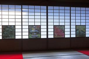 11月 雲竜院 -京都泉涌寺の別院-の写真素材 [FYI04317460]
