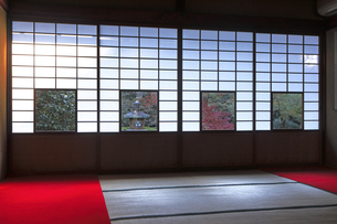 11月 雲竜院 -京都泉涌寺の別院-の写真素材 [FYI04317461]