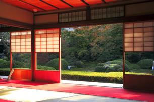 11月 雲竜院 -京都泉涌寺の別院-の写真素材 [FYI04317462]